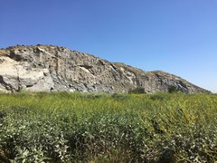 Rock Climbing Photo: Riverside Quarry in full bloom. Taken on 3/24/2017