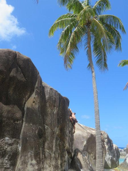 Rock Climbing Photo: Captain Morgan's Arete