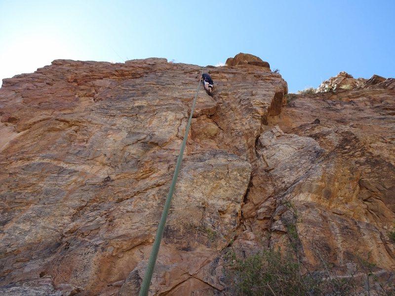 Rock Climbing Photo: thornbush crack