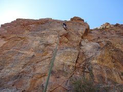 Rock Climbing Photo: thornbush crack