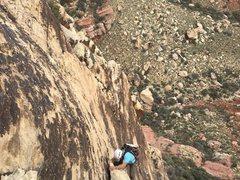Rock Climbing Photo: Frogland