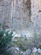 Rock Climbing Photo: Cleaned all the vegetation off this route today. T...