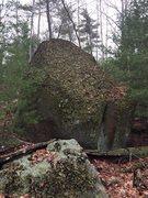 Rock Climbing Photo: Bikini Bottom 28 - Now that's some lichen!