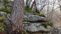 Rock Climbing Photo: Tree anchor at the top of Megster