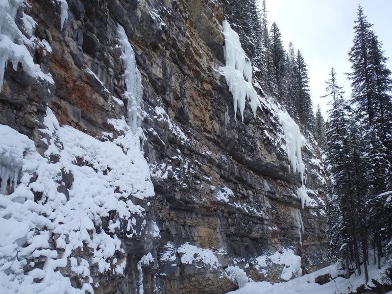 Rock Climbing Photo: Main Rehab Wall, looking downstream from near the ...