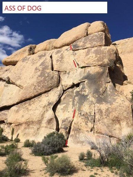 Rock Climbing Photo: ASS OF DOG