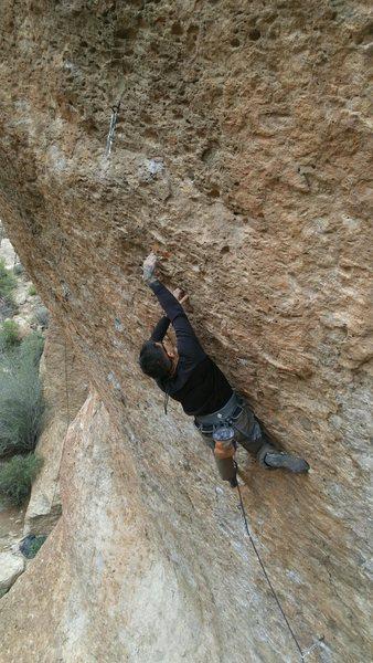 Rock Climbing Photo: Photo by Ryan Chamberlain.