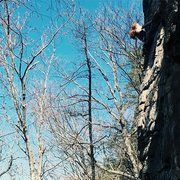 Rock Climbing Photo: Taking the lead on Afternoon Delight on a perfect ...