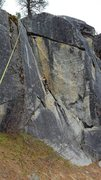Rock Climbing Photo: Phin on Poison Ivy Crack