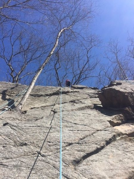 Rock Climbing Photo: Ethan on the Practice Wall 1