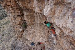 Rock Climbing Photo: Gus nose to nose on Veganator.