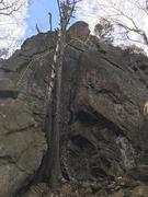 Rock Climbing Photo: Canopy