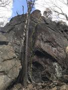 Rock Climbing Photo: Sorcerer's Apprentice