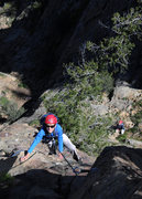 Rock Climbing Photo: On their very first multi-pitch outing, 10 year ol...