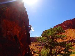 Rock Climbing Photo: The Cinema Crag outside Moab, Utah. My very first ...