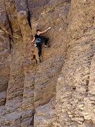 Rock Climbing Photo: Sarah Marie climbing Shoot first ask later.