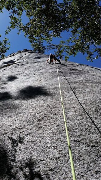 Good top rope after doing hernia...set a directional off 5th bolt<br> even worth doing just to climb the flake