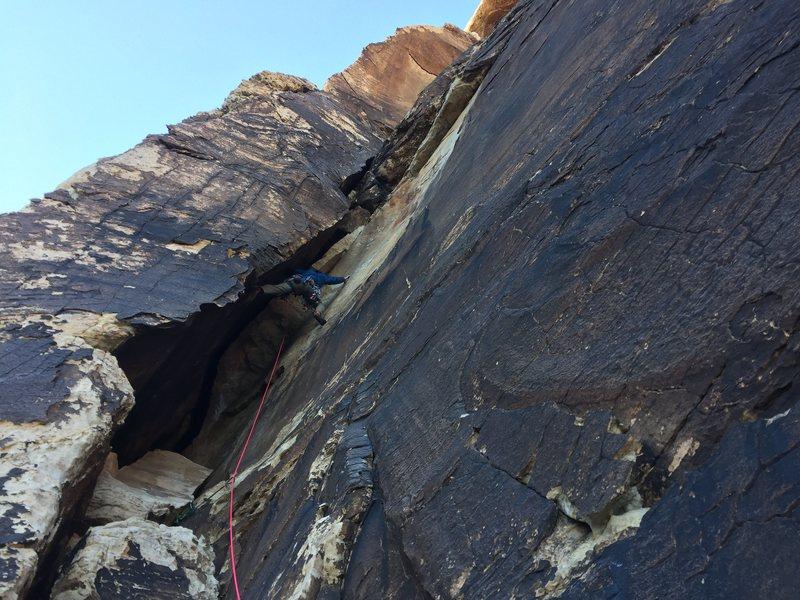 Rock Climbing Photo: Bombay engaged!