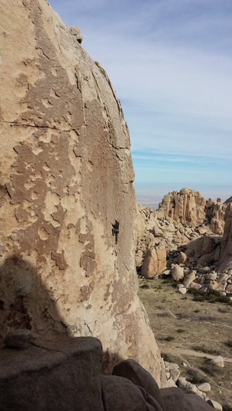 Rock Climbing Photo: Patina Wall/Valley of the Moon