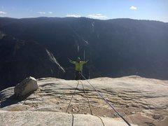 Rock Climbing Photo: Salathe topout