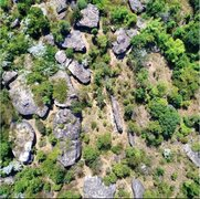 Rock Climbing Photo: Top view of the Lower Meadow area. Lots of climber...