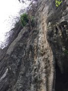 Rock Climbing Photo: we clean all the wine off so now the route is clea...