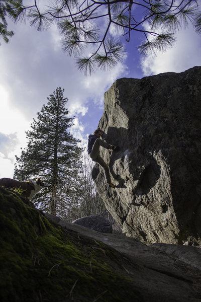 Rock Climbing Photo: Jullian climbs Sunny and Steep