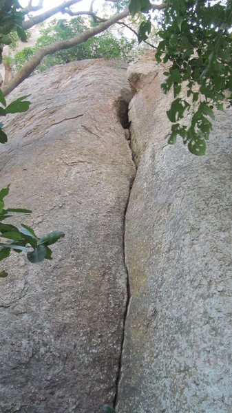 Cane Toad. The route follows the crack all the way from the ground up.