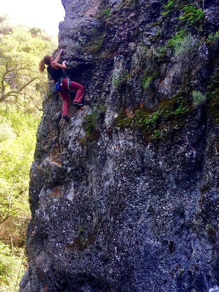 Rock Climbing Photo: Kelly Douglas leading Water Boy 10b