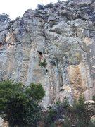 Rock Climbing Photo: Patas de pollo starts left of the tree. Anarkia y ...