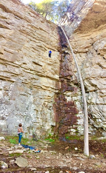 Rock Climbing Photo: Herbivore. Carnivore to the left and Dirty White B...