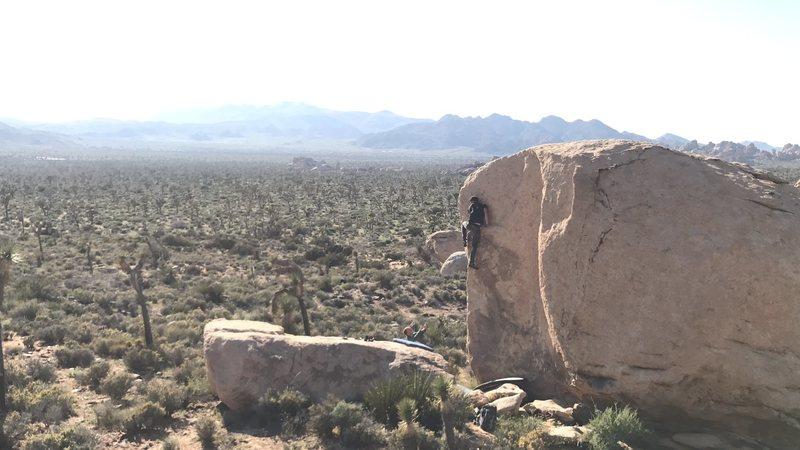 Rock Climbing Photo: Young Plates