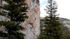 Rock Climbing Photo: Doug enjoying the splitter crack near the top of C...