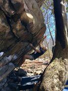 Rock Climbing Photo: Evlis Legs