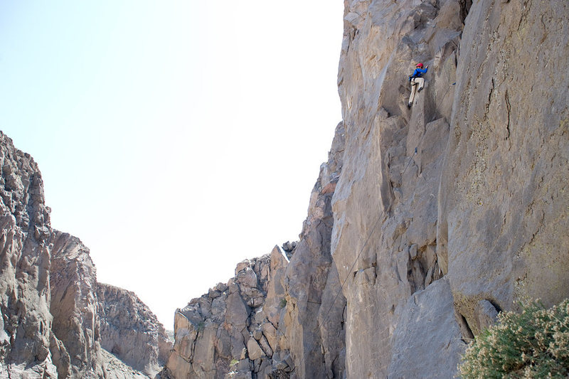 Bryson climbs Croatalusley Challenged in the Owens River Gorge.