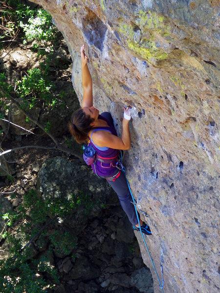 Emily reaching.  Apr 2017.