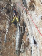 Rock Climbing Photo: Low on the route.......  stemming the trunks.
