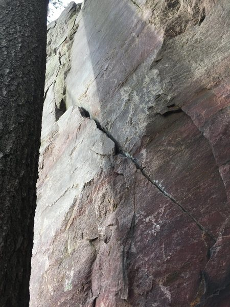 Don't lean on the tree. Follow small diagonal crack to ledge then ledge to top. Remember don't lean on the tree!