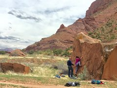 Rock Climbing Photo: Teri moving up the crimps.