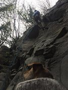 Rock Climbing Photo: Concerned canine cautiously contemplates climber.