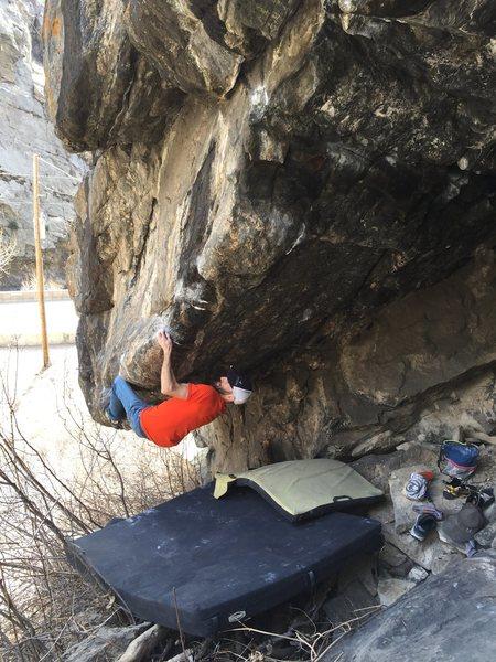 Rock Climbing Photo: Zinger working beta.