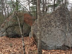 Rock Climbing Photo: Bikini Bottom 08 and 43.