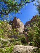 Rock Climbing Photo: Climber on Escargot!!