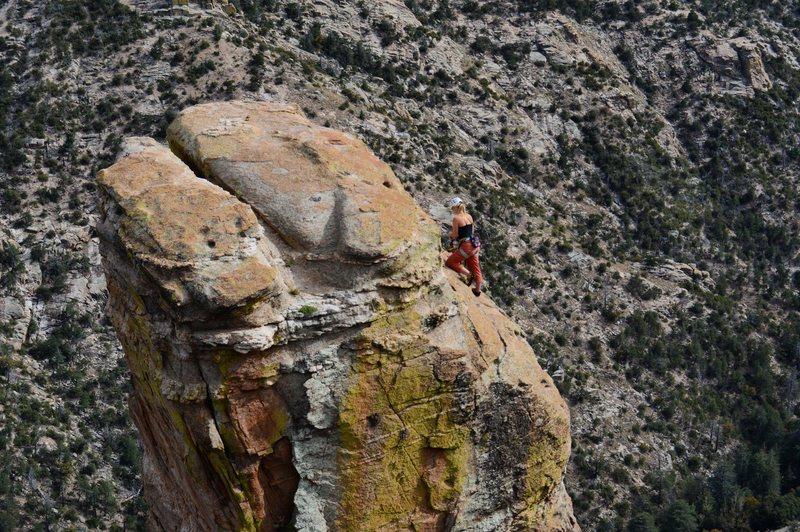 Rock Climbing Photo: Climber: Tobey Schmidt