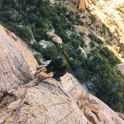 Rock Climbing Photo: Climber: Sam Jury