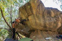 Rock Climbing Photo: Treasure Boulder
