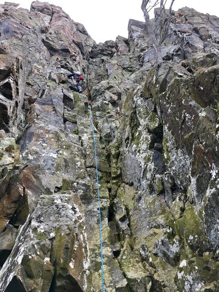 About a third of the way up Stem City. Watch for loose blocks near the top at the crux.