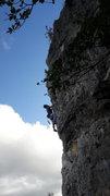 Rock Climbing Photo: Pelican walls