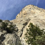 Rock Climbing Photo: The Nose of El Capitan