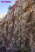 Rock Climbing Photo: The Dolphin.